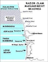 Tide Chart Long Beach Wa Razor Clams Jacks Country Store Inc Dba Jackscountrystore