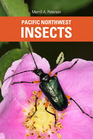Pacific Northwest Insects Merrill A Peterson