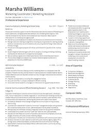 Marketing Cv Examples And Template