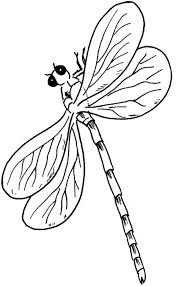 Small Picture Dragonfly coloring page Animals Town animals color sheet