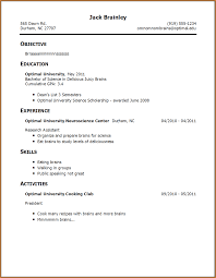 example of a resume no work experience resume builder example of a resume no work experience first resume example no work experience the