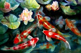 Wallpapers For > Koi Fish Pond Wallpaper Hd