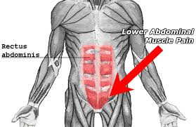 what does a pulled lower abdominal