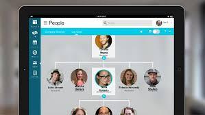 Motm 2015 New Adp Experience
