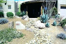 Desert Backyard Designs Inspiration Desert Landscaping Ideas For Front Yard Front Yard Desert