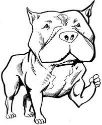 Free Pitbull Cliparts Download Free Clip Art Free Clip Art On