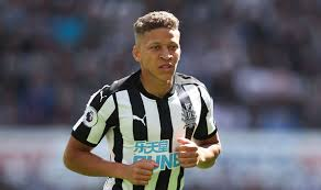 Image result for Newcastle United Dwight Gayle
