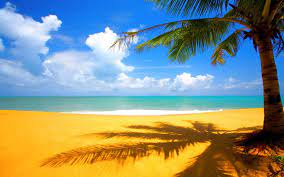 40+] HD Beach Desktop Wallpaper on ...
