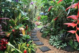 Small Picture Dennis Hundscheidts tropical garden Best tropical gardens in