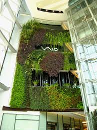 Small Picture Vertical Gardens