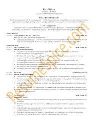WwwSample Resume Best Resume Samples For Executives And Professionals ResumeSpice 24