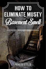 eliminate musty smell in basement