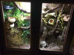 terrarium furniture. diy reptile furniture cage this one is for my leachie gecko that i made out terrarium