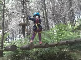 Walking Logs Walking On Logs Picture Of Adventure Forest Whangarei Tripadvisor