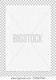 Graph Paper Sheet Vector Photo Free Trial Bigstock