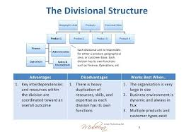 5 Each Divisional Simple Organizational Structure Chart Hospital