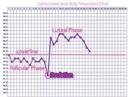 Basal Body Temperature Ovulation Chart Advice