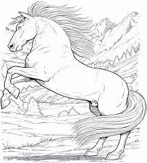 Disegni Cavalli Da Colorare E Stampare Artstage