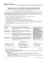 Resume Templates Microsoft Word 2013 Gorgeous Download Resume Template Word 44 Chronological Letsdeliverco