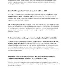 Free Modern Resume Templates Projet Manager