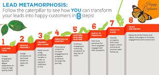 Lead Nurturing 8 Steps To Nurturing Your Leads Into Butterflies Marketbridge