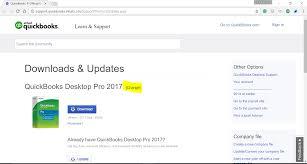 quickbooks pro 2017 license and