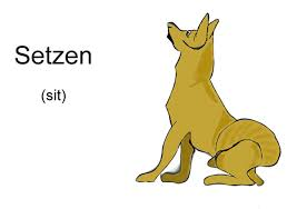 german dog mands