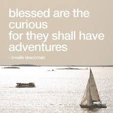 Love Adventure Quotes Delectable Tracing Echoes Quotes I Love Adventure