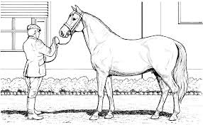 Small Picture Horse Coloring Pages That Look Real Coloring Pages