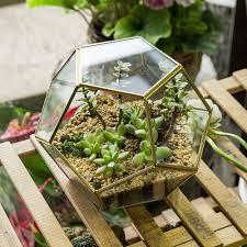 geometric glass terrarium box succulent flower pot plant display container decor 1 of 12free