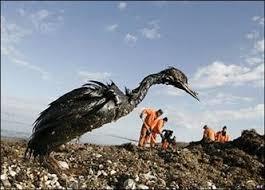 """Реферат на тему """" Экологические проблемы нефтегазового комплекса  Самой крупной мировой катастрофой на сегодняшний день признана авария на нефтяной платформе deepwater horizon произошедшая 20 апреля 2010г в 80 км от"""