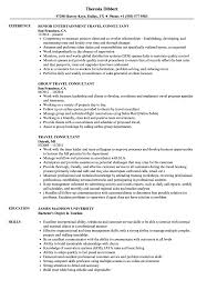 Travel Resume Examples Travel Consultant Resume Samples Velvet Jobs 3