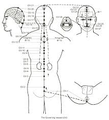 the governing vessel Meridian Lines Body Map the governing meridian trajectory meridian lines body map