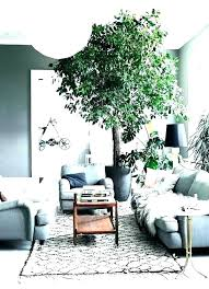 trees and trends furniture. Trees And Trends Furniture. Trends Trees And Furniture Home Decor At  In Furniture D