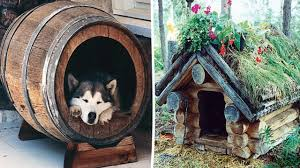 free diy dog house plans ideas for your furry friend