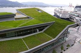 Green architecture  green roof