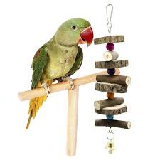 fit to viewer prev next parrot toys