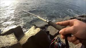 Ultra Light Rock Fishing Ultralight Spinning Light Rockfishing Tracine Jugulo Molix