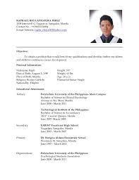Art Teacher Resume Houston Sales Teacher Lewesmr