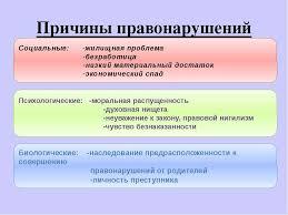 Причины правонарушений курсовая по теории государства и права  Причины правонарушений реферат