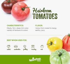 Tomato Color Chart The Complete Guide To Every Type Of Tomato Naturefresh Farms