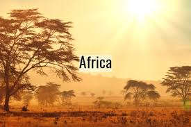 Image result for africa