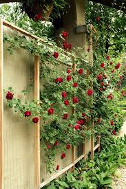 Small Picture 152 best Gardening Trellises Pergolas images on Pinterest