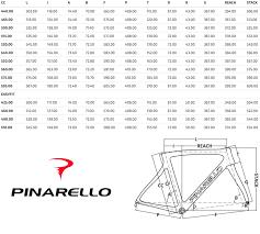 Pinarello Gan Road Bike Carbon With Shimano 105 Size 51cm