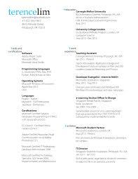 Impressive Professional Resume Font Types In Best 25 Professional