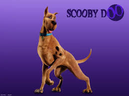 Scooby Doo Wallpaper Bedroom 41 Scooby Doo Hd Wallpapers Backgrounds Wallpaper Abyss