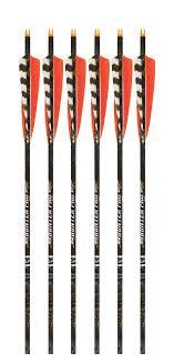 Beman Ics Hunter Pro Carbon Arrows