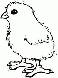 Small Picture Mother hen rooster and cute chicks coloring page SuperColoring