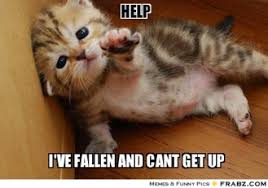 Image result for fallen and can't get up