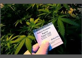 should marijuana be made legal for medical purposes org should marijuana be made legal for medical purposes